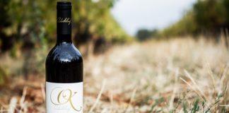 Wine Tasting with Swiss Flair - Onderkloof Wine Estate!