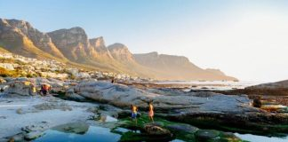 Cape Town named as one of the best cities in the world for eco-friendly travel